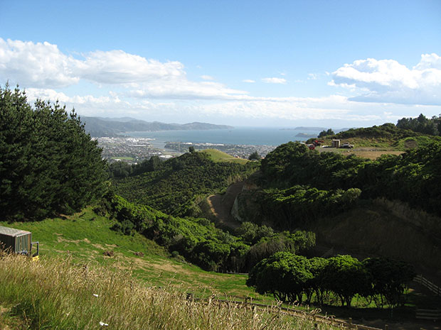 Looking across to Wellington Harbour